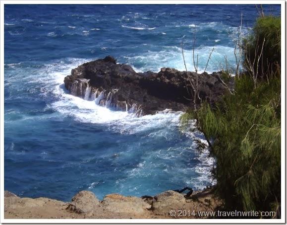 Maui2014BF 064