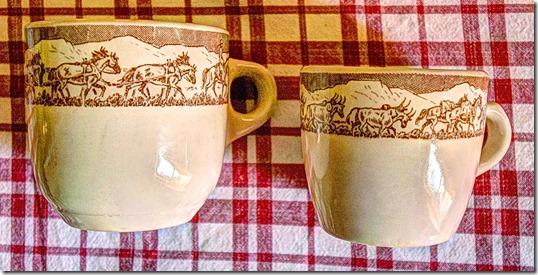 pt cup comparison