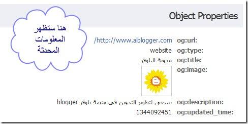 facebook_debugger_0002