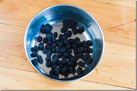 Blackberry lime smoothie-3547