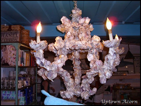 oyster chandelier