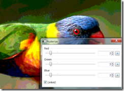 posterizing the lorikeet image in Paint.net