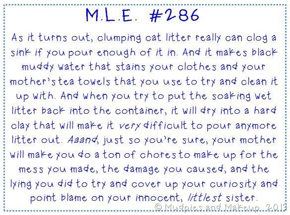 Cat Litter Story