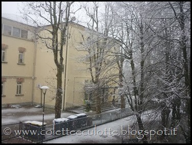 Neve a Padulle - 28 gennaio 2014(11)