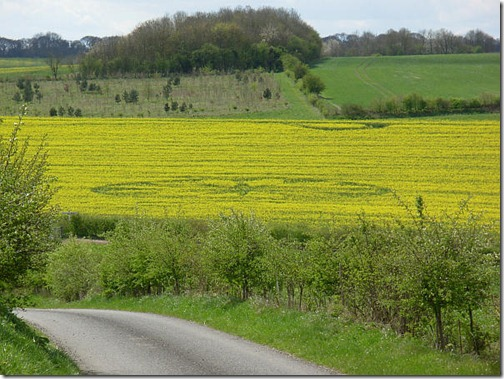 Круг на поле Восточный Кеннет, графство Уилтшир, 15 апреля 2012 г.