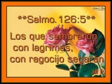 SALMOSLLORO09