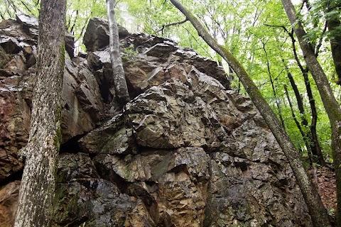 Žabia skala