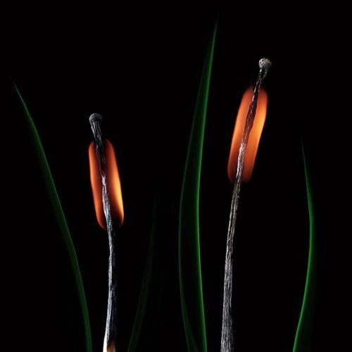 Arte russa com fogo 16