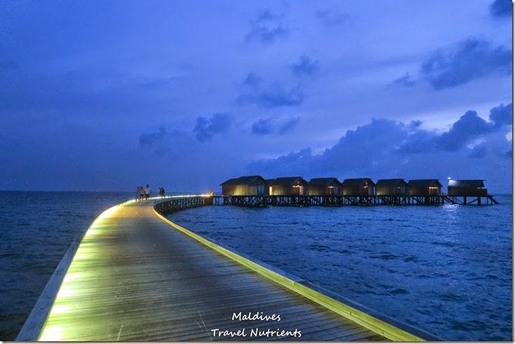 馬爾地夫 Centara渡假村 (62)
