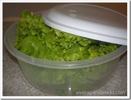 Higienizando Verduras1