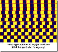 ambiguous-illision_www.dadanpurnama.com_18