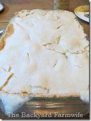 Family Sized Chicken Pot Pie - The Backyard Farmwife