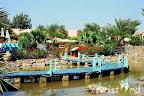 Фото 7 LTI Paradisio Beach Hotel