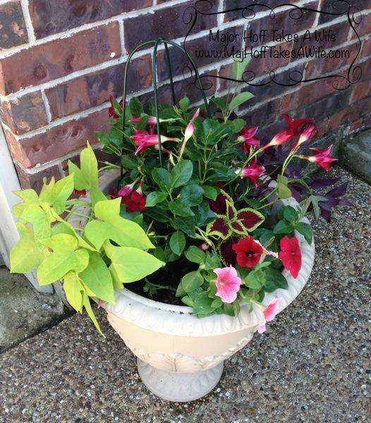 planters to flank doors