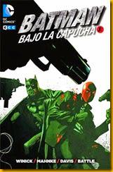 batman_bajo_capucha3