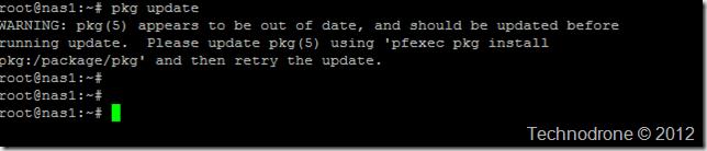 pkg update error