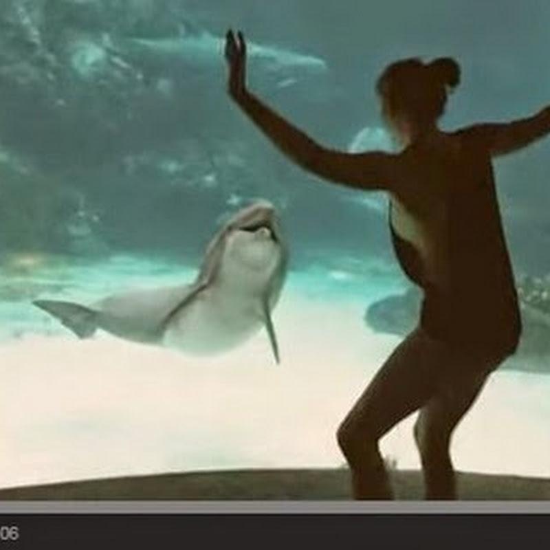 Κοπέλα κάνει τα δελφίνια να  γελούν