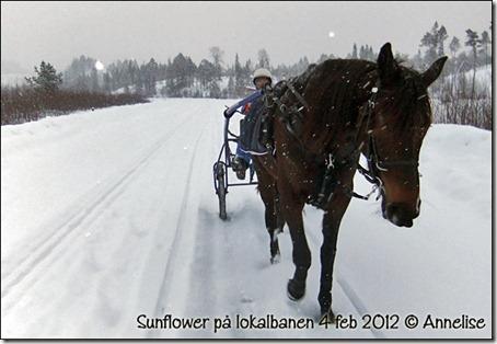 2012-4feb-bane_03