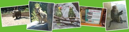 View Seneca Park Zoo, Rochester, NY
