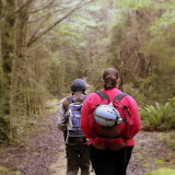 On Our Way to Honeycomb Hill - Karamea, New Zealand
