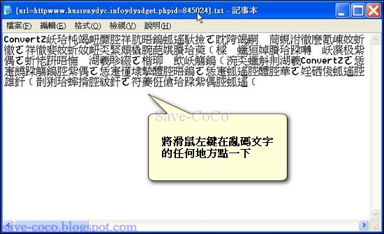 codeconvert-000.jpg
