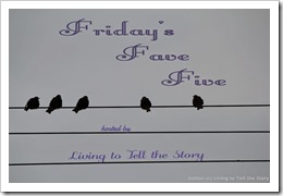 FFF birds on a wire