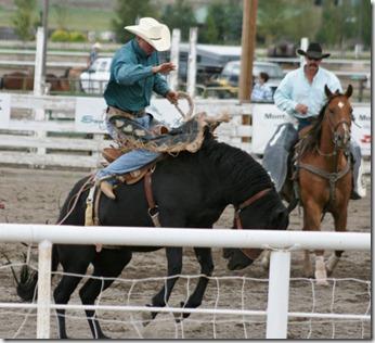 689 saddle bronc (640x583)
