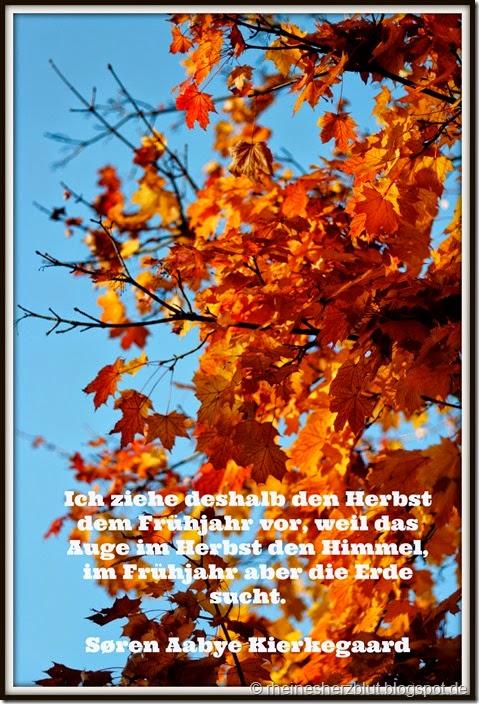 2014_10_18_ Zitat im Bild