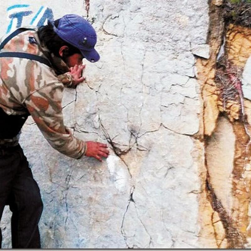 Chuquisaca: Huellas de dinosaurios son encontradas en San Lucas