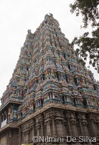 2013 01 09 Madurai (2 of 120)