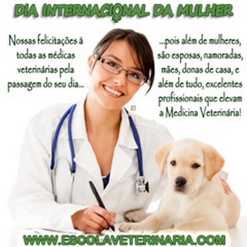 Parabéns para todas as Médicas Veterinárias
