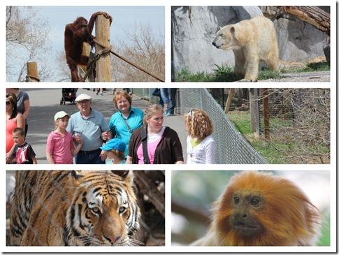 Zoo.3