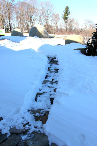 Oh, goodie!  The guys have finally shoveled a path for us.  Now we can go out and explore the farm all covered in snow.
