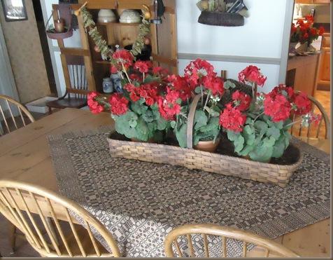 Geraniums on dark tablecloth