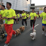 Pet Express Doggie Run 2012 Philippines. Jpg (29).JPG