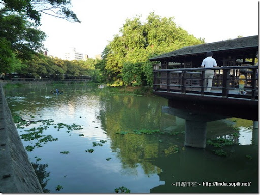 新竹公園-麗池-2