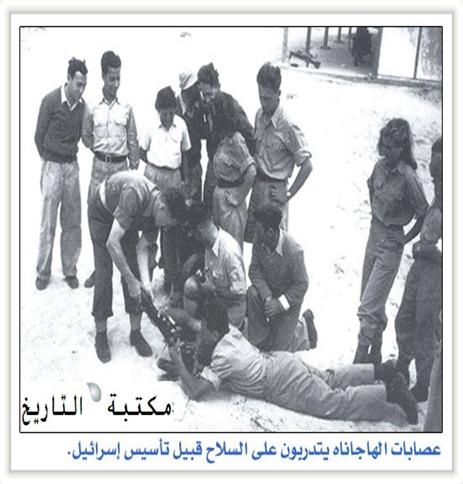 يهود_حرب_فلسطين