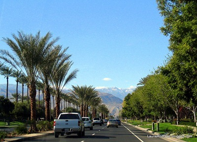 Driving through Palm Desert