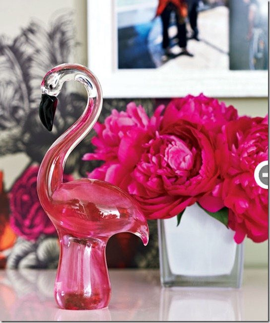 fresh-feminine-flamingo