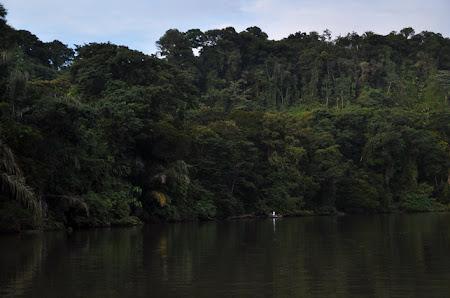 Obiective turistice Costa Rica: Pe Rio Tortuguero