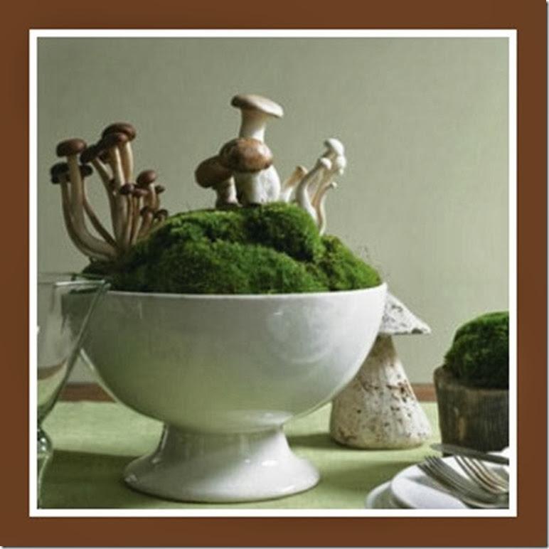aa48a08e3fe8a086beac22cf1f545e58 mos and mushroom ribbit