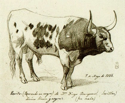 HB-castellano2 Toro de Hidalgo Barquero 1855