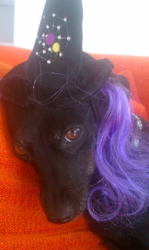A very sultry purple haired Daisy!