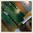cafe_v_lese