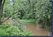 Flood 2011-09-06 003