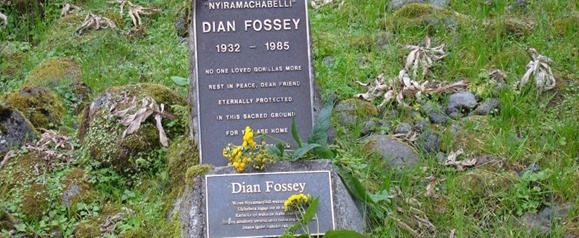 Trek to Dian Fossey Tomb (Grave) Hike