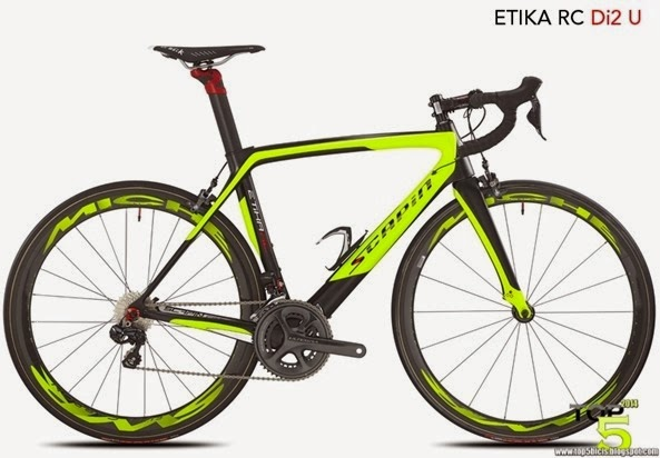SCAPIN ETICA RC (1)