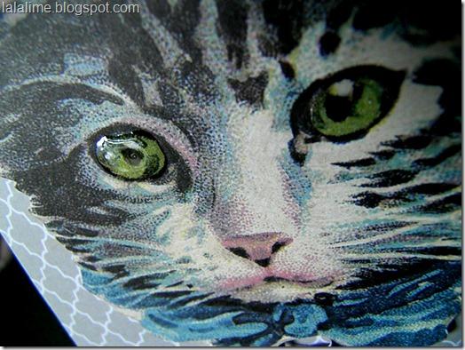 Cat-Tag1b_Barb-Derksen