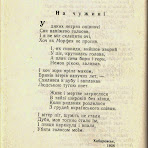 пронченко-у-нетрях.jpg