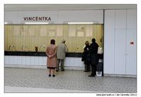 Vincentka teplá i studená